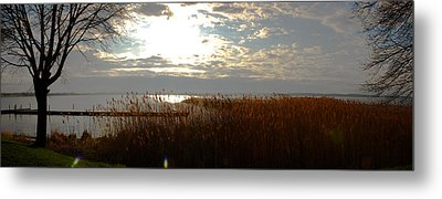Lake Seneca Metal Print