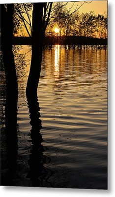 Lake Silhouettes Metal Print by Julie Andel