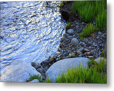 Lake Tahoe River's Edge Metal Print by Anne Barkley
