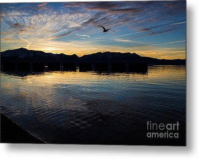 Lake Tahoe Sunset Metal Print by Suzanne Luft