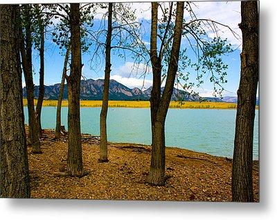 Lake Through The Trees Metal Print