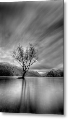 Lake Tree Mon Metal Print by Beverly Cash