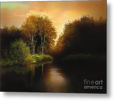 Lake Trees Metal Print by Robert Foster