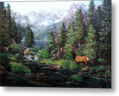 Lake Verna Elk Metal Print by W  Scott Fenton