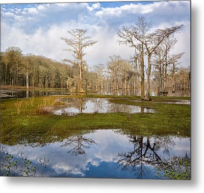 Lake View Metal Print by Denis Lemay