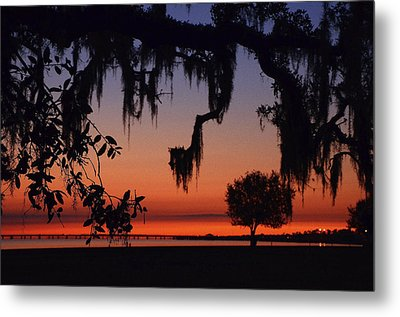 Lakefront Sunset Metal Print by Charlotte Schafer