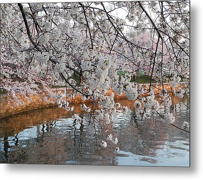 Metal Print featuring the photograph Lakeside by Yue Wang
