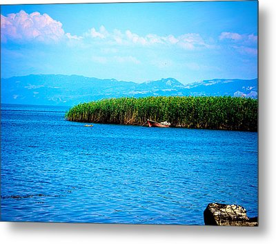 Metal Print featuring the photograph Lakeview by Zafer Gurel