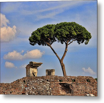 Metal Print featuring the photograph L'albero by Oscar Alvarez Jr