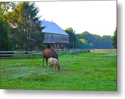Lancaster County Farm Metal Print by Bill Cannon