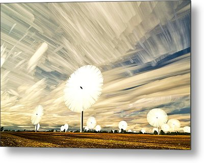 Land Of The Giant Lollypops Metal Print by Matt Molloy