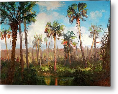 Land Of The Seminole Metal Print by Keith Gunderson
