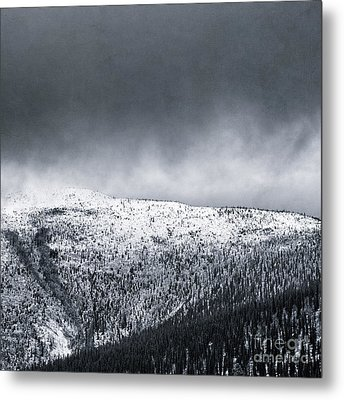 Land Shapes 2 Metal Print by Priska Wettstein