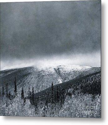 Land Shapes 3 Metal Print by Priska Wettstein