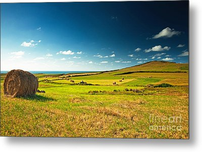 Landscape At Summer Metal Print by Boon Mee