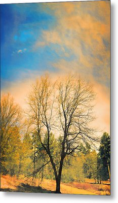 Landscape In Blue And Yellow  Metal Print by Douglas MooreZart