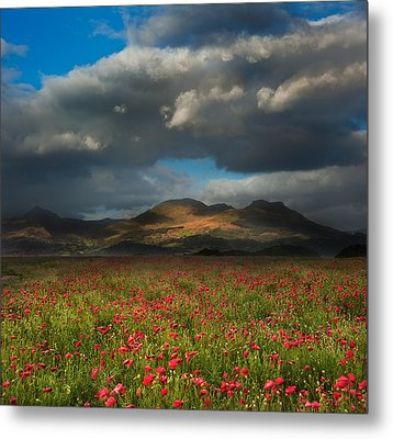 Landscape Of Poppy Fields In Front Of Mountain Range With Dramat Metal Print by Matthew Gibson