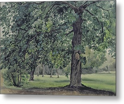 Landscape With Chestnut Tree In The Foreground Metal Print by Thomas Collier