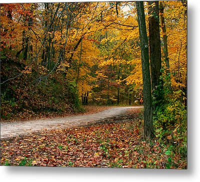 Lane In Fall Metal Print