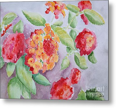 Lantana Metal Print by Marilyn Zalatan