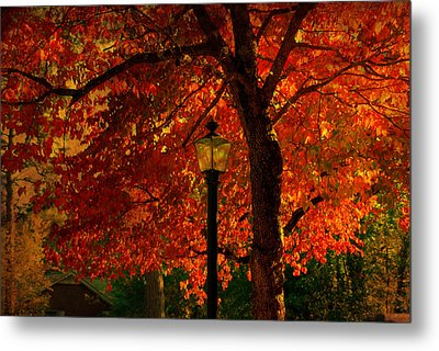 Lantern In Autumn Metal Print