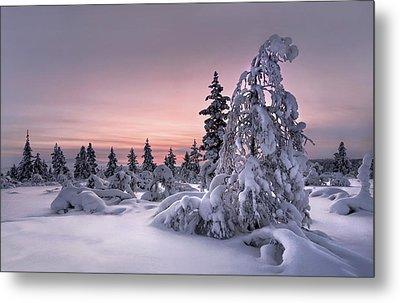 Lappland - Winterwonderland Metal Print