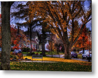 Metal Print featuring the photograph Larchmont-radcliffe Park by Don Nieman