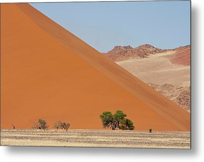Large Dune With Trees In Front Metal Print