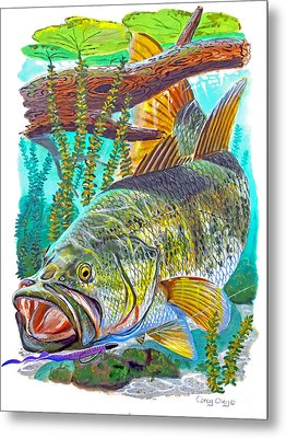 Largemouth Bass Metal Print by Carey Chen