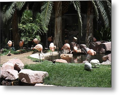 Las Vegas - Flamingo Casino - 12129 Metal Print by DC Photographer