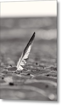 Last Days Of Summer In Black And White Metal Print by Sebastian Musial