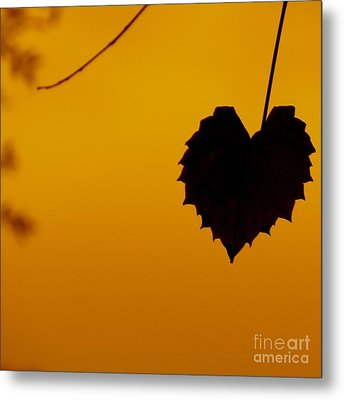 Metal Print featuring the photograph Last Leaf Silhouette by Joy Hardee