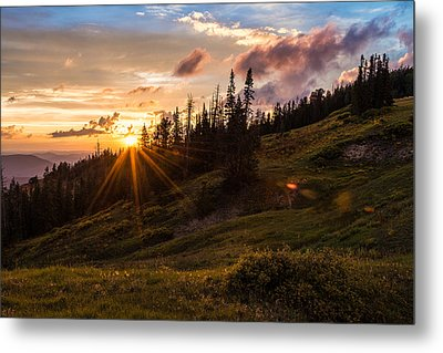Last Light At Cedar Metal Print