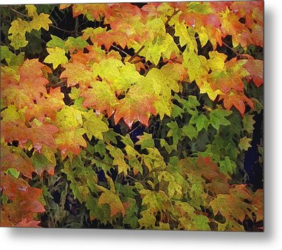 Last Year's Autumn Leaves Metal Print by Philip White