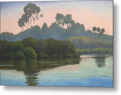 Metal Print featuring the painting Late Afternoon At The Bird Refuge by Jennifer Boswell