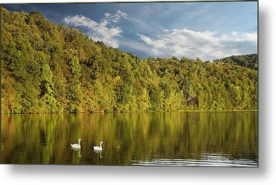 Late Afternoon At The Lake Metal Print by David Dehner