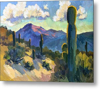 Late Afternoon Tucson Metal Print by Diane McClary