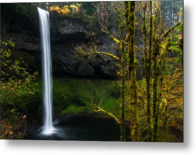 Late Autumn At Silver Falls Metal Print