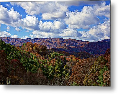 Late Autumn Beauty Metal Print by Tom Culver