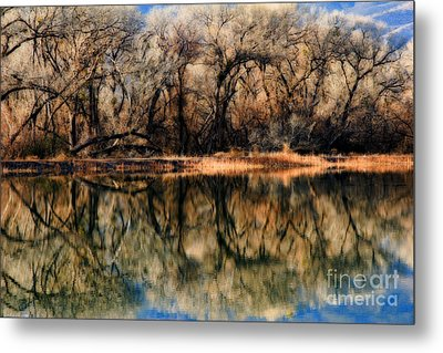 Late December Reflection At Dead Horse Metal Print by Ron Chilston