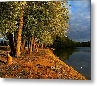 Late Evening On White River Metal Print by Julie Dant