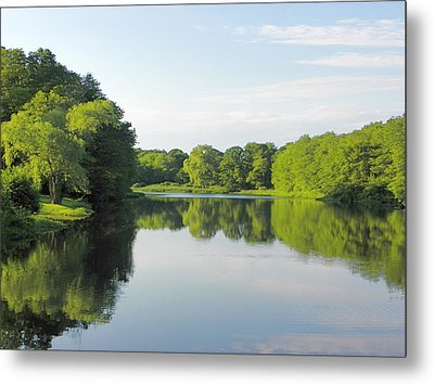 Late In The Day Metal Print