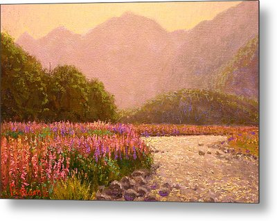 Late Light Egglinton Valley Metal Print