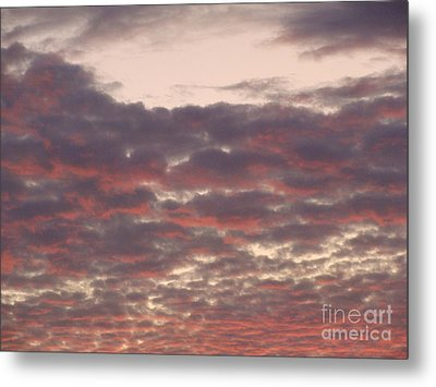 Late Summer Evening Sky Metal Print