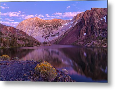 Late Summer Night Dream Metal Print by Jonathan Nguyen