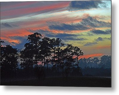 Metal Print featuring the photograph Late Sunset Trees In The Mist by Bill Swartwout