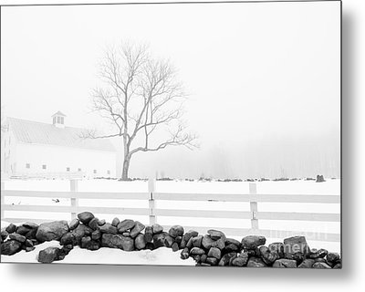 Late Winter Metal Print by Alana Ranney