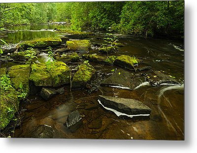 Laughing Fish River Metal Print