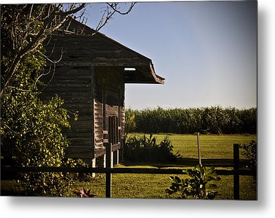 Metal Print featuring the photograph Laura Plantation Slave Home by Ray Devlin