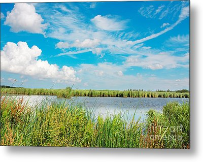 Lauwersmeer National Park. Metal Print